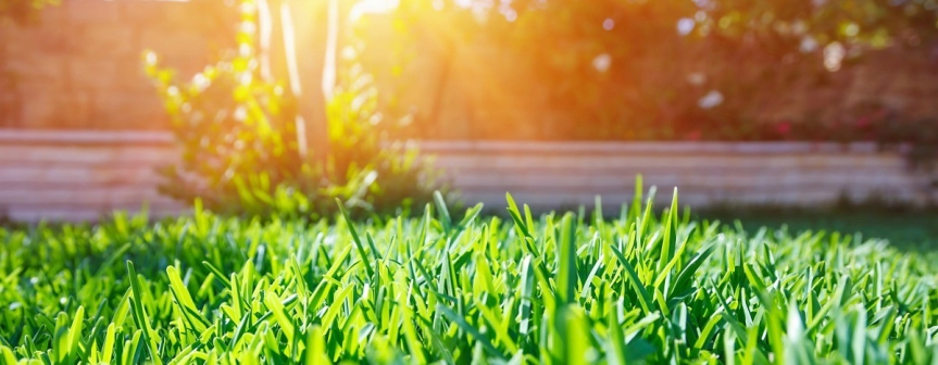 Spring-Green Lawn Care of North Alabama